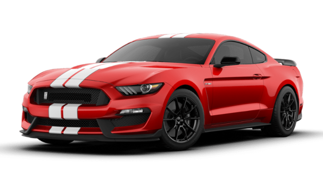 2019 Ford Mustang Fastback Shelby GT350  Fastback